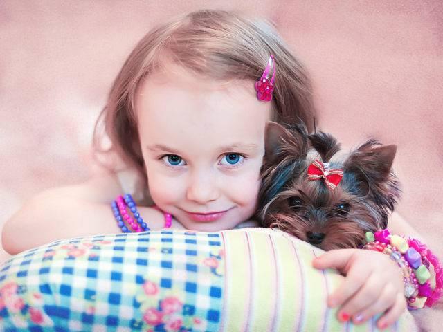 małe rasy psów przyjazne dzieciom