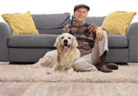 Psy dla osób starszych