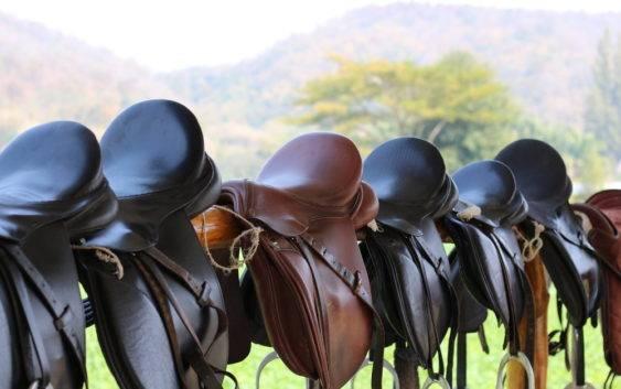 Rodzaje siodeł do jazdy konnej