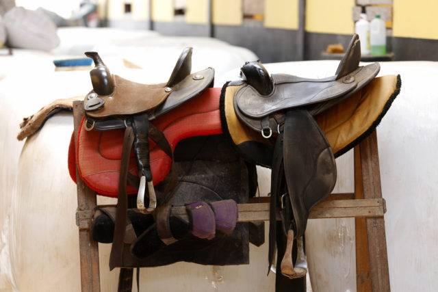 rodzaje siodeł dla konia