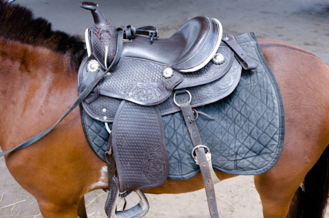 rodzaje siodeł dla koni siodło westernowe