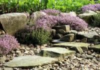Jak zaplanowaćskalniak w ogrodzie?
