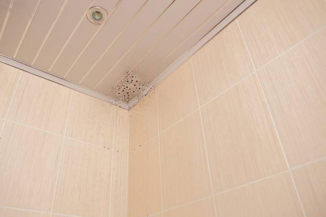 widoczna wilgoć w łazience