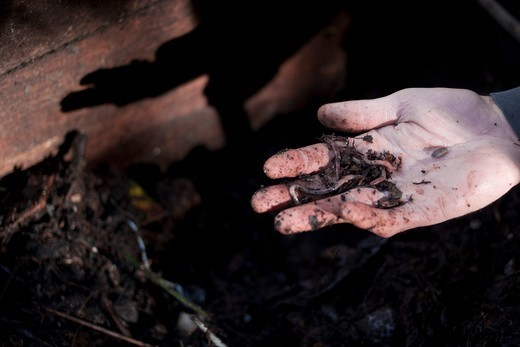 co to jest kompost naturalny