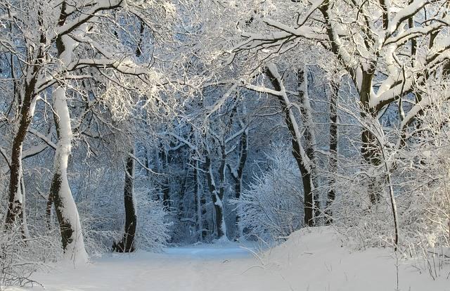 okrywa śnieżna śnieg